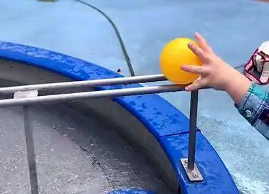 Zabawa z fizyką