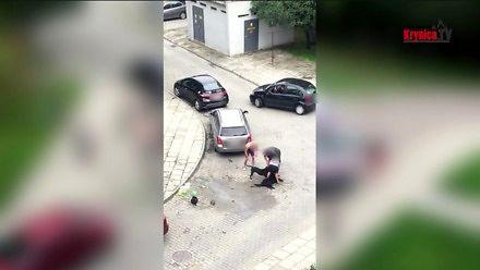 Pit Bull zaatakował kobietę i jej psa