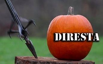 DiResta robi broń na apokalipsę zombie