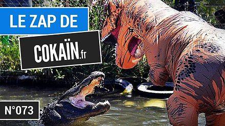 Podwodna dyskoteka, czyli kompilacja Le Zap de Cokaïn.fr n°073