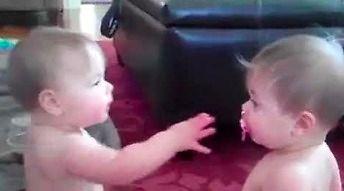 Kiedy Szkotom urodzą się bliźnięta