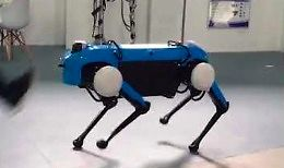 Chińska podróbka robota Boston Dynamics