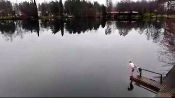 Jak pływają morsy w Finlandii?