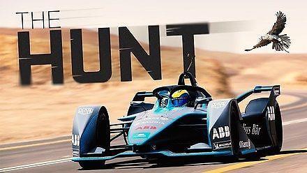 Felipe Massa kontra sokół