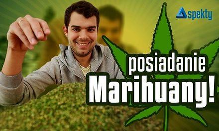 Co grozi za posiadanie marihuany?