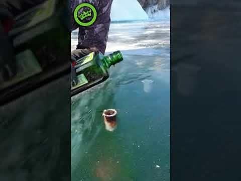 Zimne shoty prosto z lodowych kieliszków