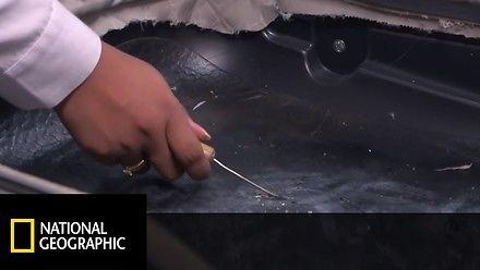 Mężczyzna przemycał kokainę zatopioną w plastiku