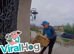 Pies pomaga właścicielowi odbierać paczki