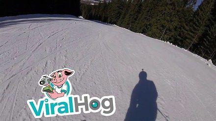 Spokojny przejazd na nartach zakłócony przez...