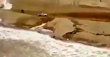 Kierowca pędzi, żeby uciec zanim woda odetnie mu drogę