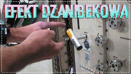 Efekt Dżanibekowa w kosmosie