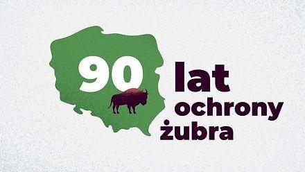 90 lat ochrony żubra