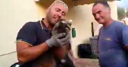 Włoski strażak ratuje małego kotka i płacze ze wzruszenia