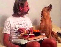 Twoje jedzenie wcale mnie nie interesuje