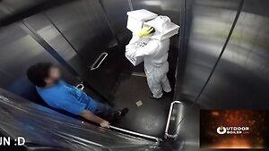 Dowcip z pszczołami w windzie