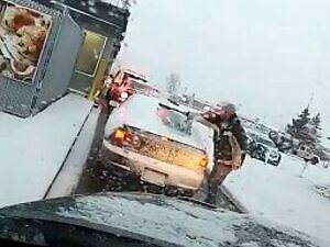 Wścieklizna drogowa w Kanadzie