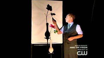 Penn & Teller - Cień kwiatka