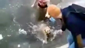 Mężczyzna ratuje psa z lodowatej wody