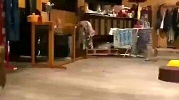 Jeśli nie widziałeś, jak biegają sowy, ten filmik jest właśnie dla ciebie