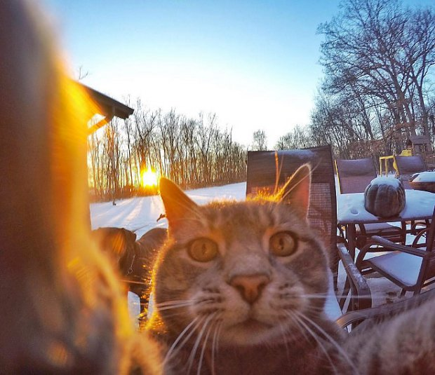 selfie-evening