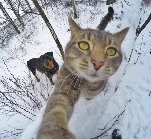 selfie-forest