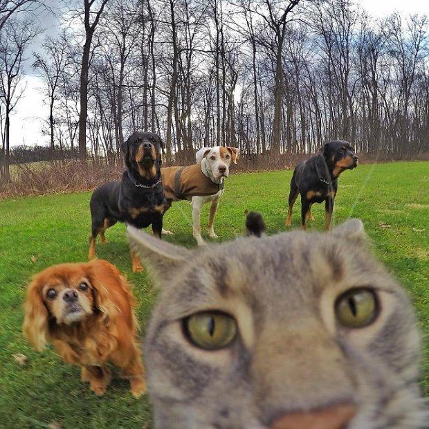 selfie-family