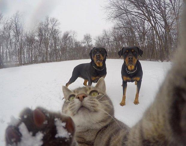 selfie-slip