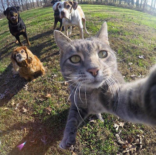 selfie-team