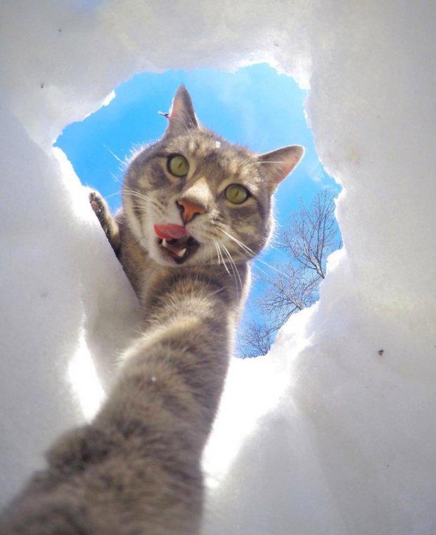 selfie-hole
